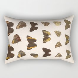 Vintage Scientific Hand Drawn Illustration Anatomy Of Butterfly Insect Patterns Biology Art Rectangular Pillow