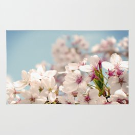 Spring, Flower Photography, Pastel, Pink, Romantic Cherry Blossom, Art Deco - 8 x 10 Wall Decor Rug