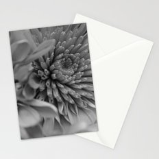 Blooming B&W Stationery Cards