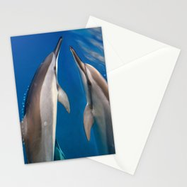 Dolphin Bubbles Stationery Cards