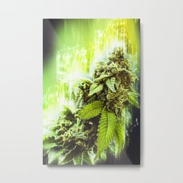 Elevation Metal Print