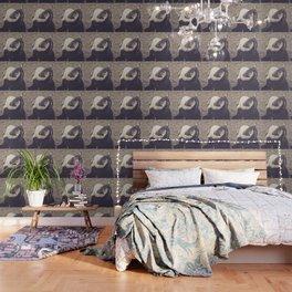 Adorable African Penguin Series 1 of 4 Wallpaper