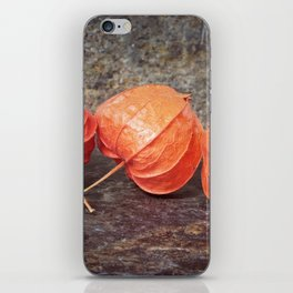 Fall colors with the winter cherries iPhone Skin