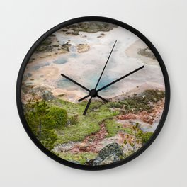 The Great and Wild Basin of Life Wall Clock