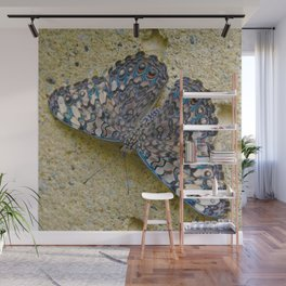 Turquoise and Sand Butterfly by Teresa Thompson Wall Mural