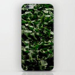 Wall Lilies iPhone Skin