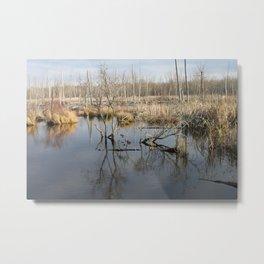 beverly shores wet lands. Metal Print