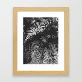 Botanical Rio B&W Framed Art Print