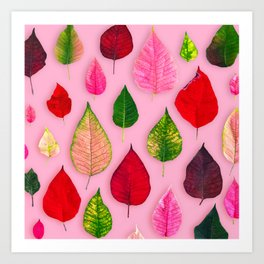 Plants on Pink Art Print