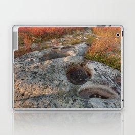Autumn Huckleberry Fossil Laptop & iPad Skin