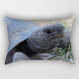 Step Off Rectangular Pillow