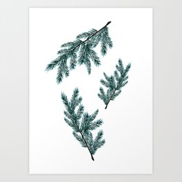 Peaceful Fern Art Print