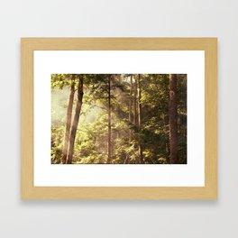Maine II Framed Art Print