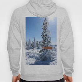 Winter mountans Hoody
