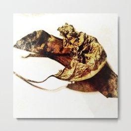 Tantric Leaf Metal Print