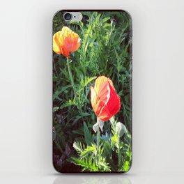 ca poppy iPhone Skin