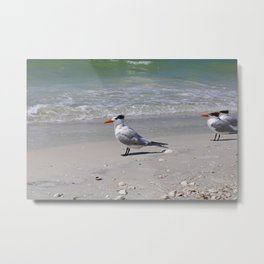 Sweet Summertime Metal Print
