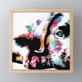 riley the lab pup Framed Mini Art Print