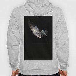 Jellyfish 6 Hoody