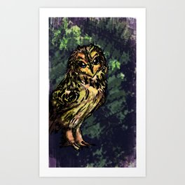 Short-Earred Owl Art Print