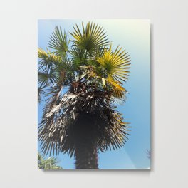 Palm Sunday Metal Print