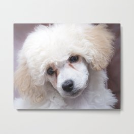 The Innocence of a Puppy Metal Print