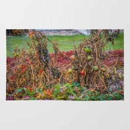 Dying Garden Rug