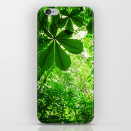 Rainforest Radiance iPhone Skin