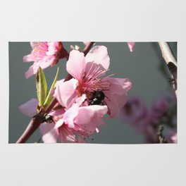 Unidentified Winged Insect On Peach Tree Blossom Rug