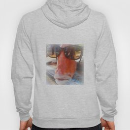Cool Fish..... Hoody