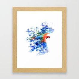 Smoking parrot Framed Art Print