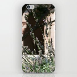 Lavender of Cloisters iPhone Skin
