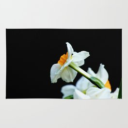Daffodils3 Rug