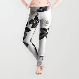 Blackberry Spring Garden - Birds Bees and Flowers Leggings