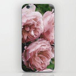 Pale pink Rose Sandi iPhone Skin