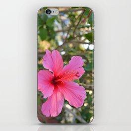 Summer Bloom iPhone Skin