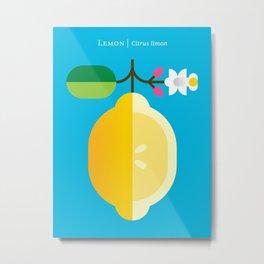 Fruit: Lemon Metal Print