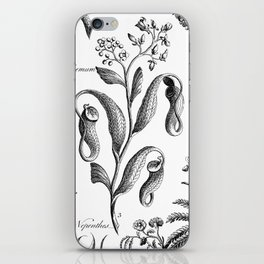 Antique Nepenthes and Drosera Print from 1757 iPhone Skin