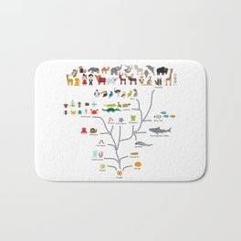 Evolution scale from unicellular organism to mammals. Evolution in biology, scheme evolution Bath Mat