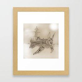Shell Back Framed Art Print