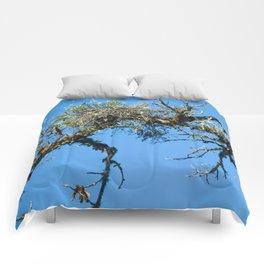 Treehuggers Comforters