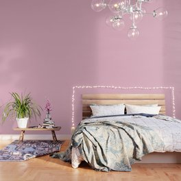 Cameo Pink - solid color Wallpaper
