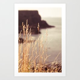 Peaceful Coast Art Print