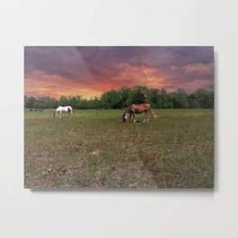 Horses out to pasture Metal Print