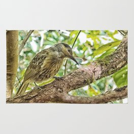 Bird on a branch Rug