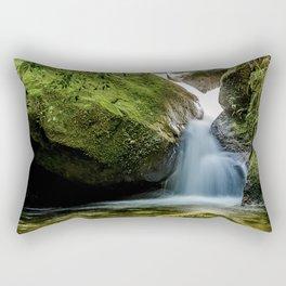 Uricanal Rectangular Pillow