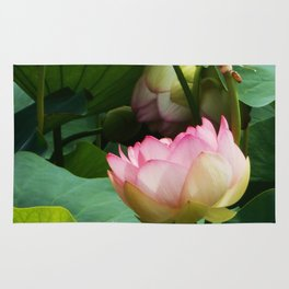 The Lotus Rug