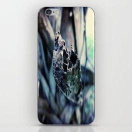 Palm Tree iPhone Skin