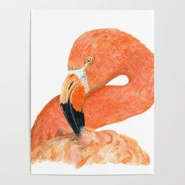 Breezy Flamingo by Teresa Thompson Poster