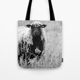 Sheep with sharp eyes Tote Bag